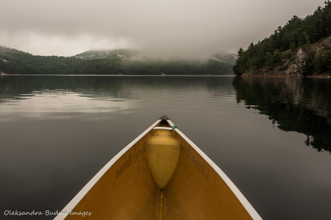 canoeing on Killarney Lake in the early morning fog