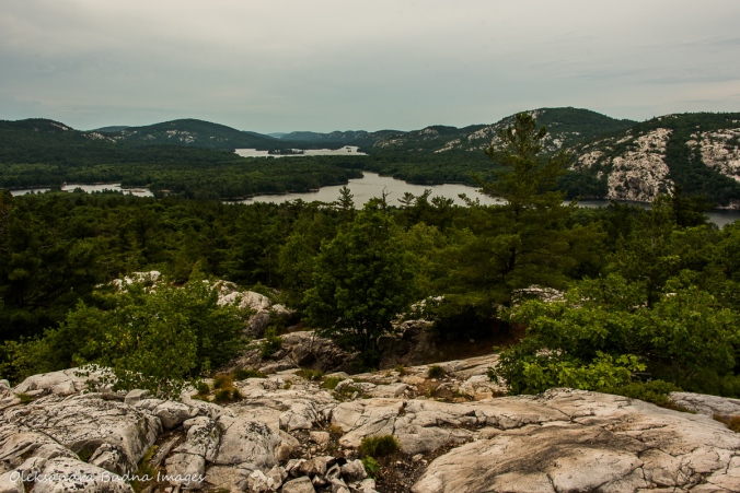 view from the Crack in Killarney Provincial Park