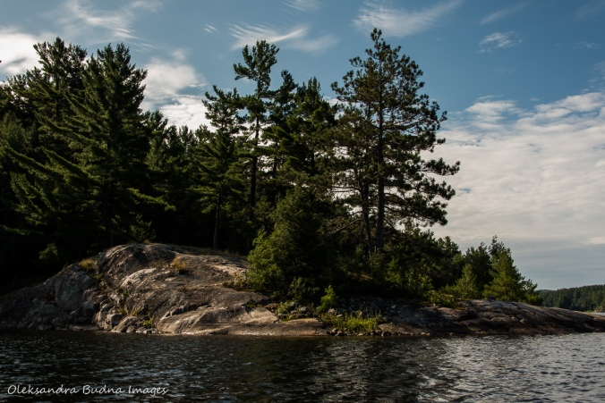 view from the water of site 52 on Three Narrows Lake in Killarney