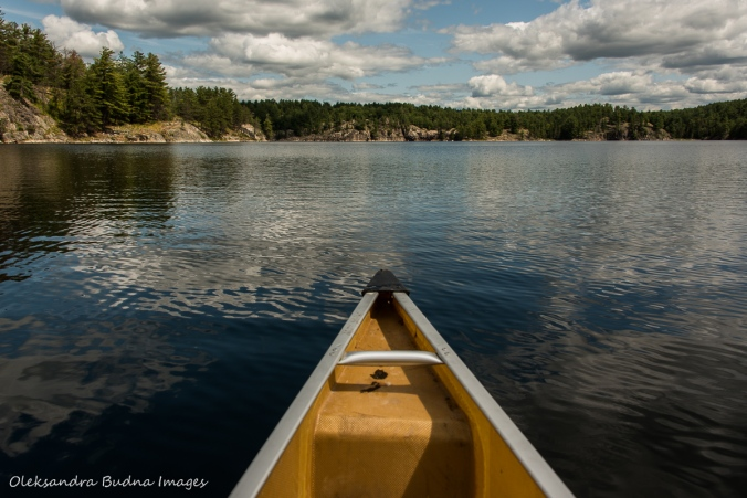 paddling on Low Lake