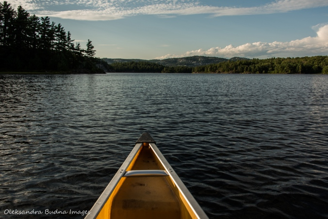 paddling on Three Narrows Lake in Killarney