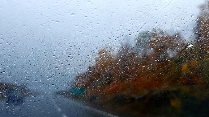 fall colours along the road through rain streaked wind shield