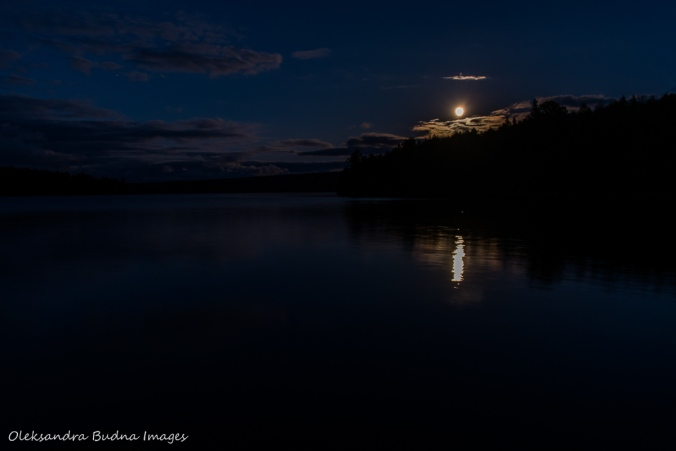 full moon over Lake Louisa in Algonquin