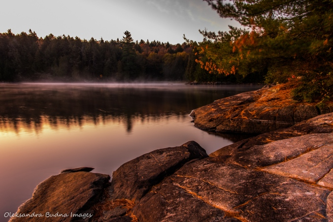 early morning on Lake Louisa in Algonquin