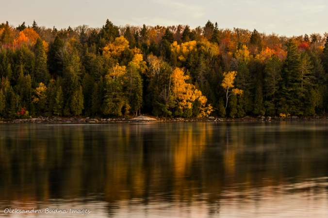 Lake Louisa in the fall