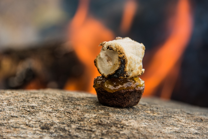 marshmallow on a brownie by the campfire