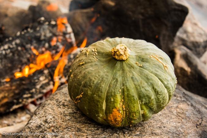 buttercup pumpkin by the fire