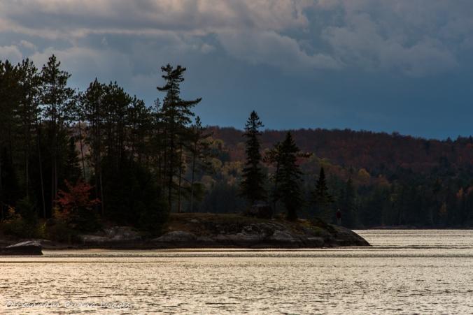 Lake Louisa in the fall
