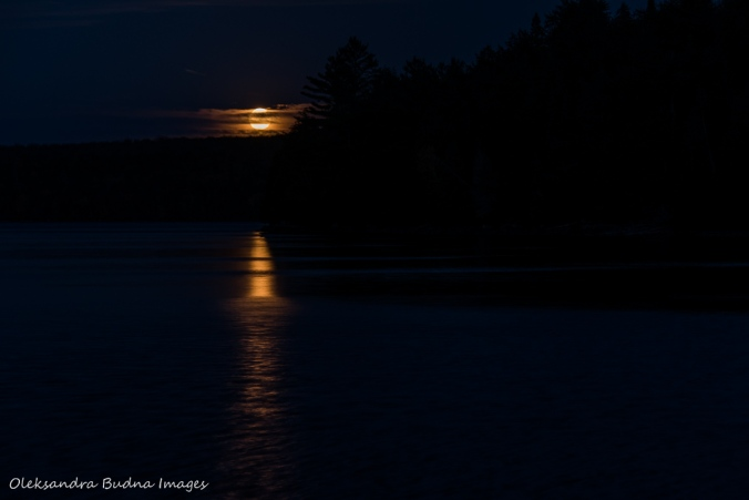 full moon over Lake Louisa in Algonquin