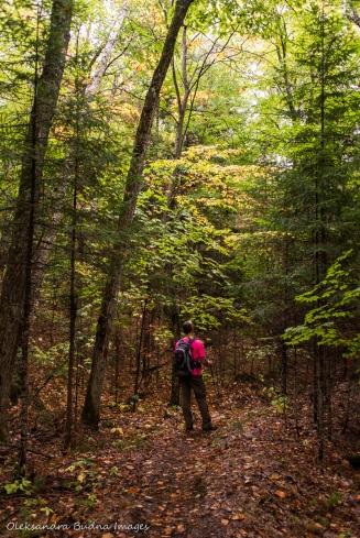 hiking Lakeshore Trail at Silent Lake