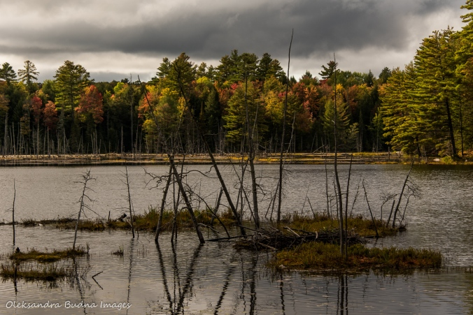 Silent Lake in the fall
