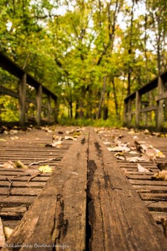 bridge at ojibway park in Windsor