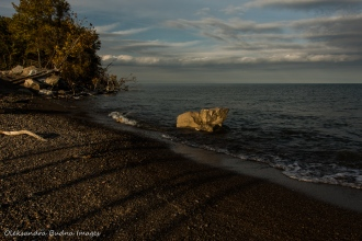at the tip at Point Pelee National Park