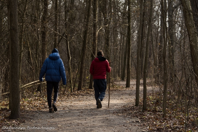 hiking at Point Pelee National Park