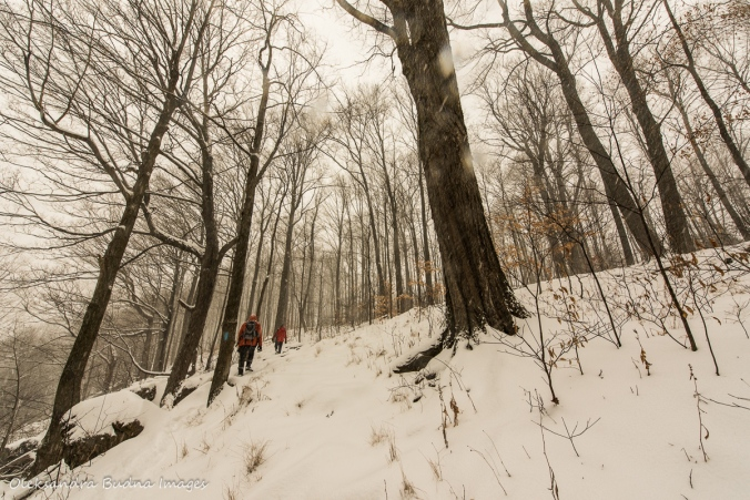 hiking at Rattlesnake point in the winter