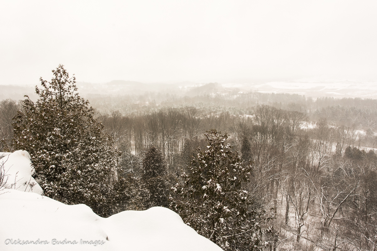 view from Rattlesnake point conservation area in the winter