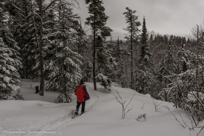 snowshoeing at Windy Lake provincial park