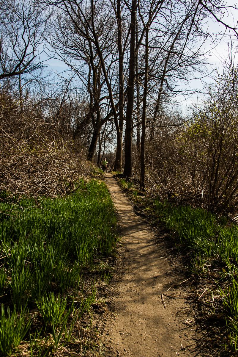 trail along etobicoke creek