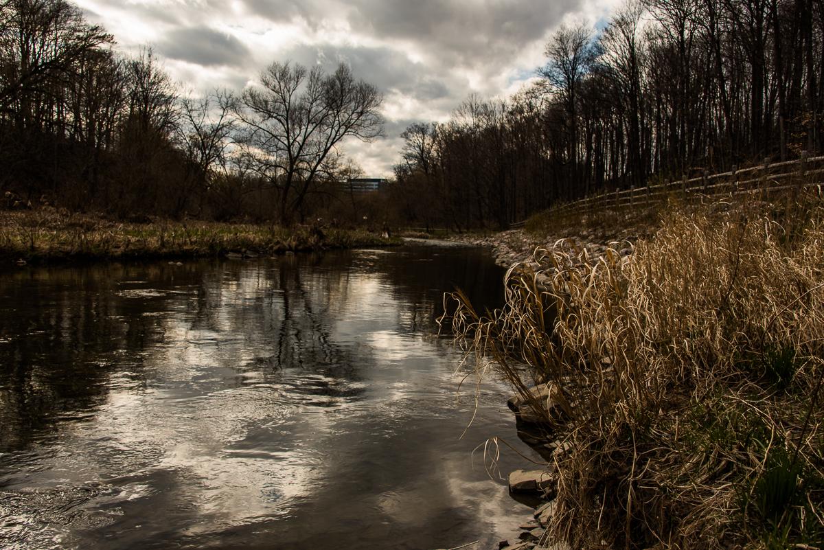 Etobocike creek