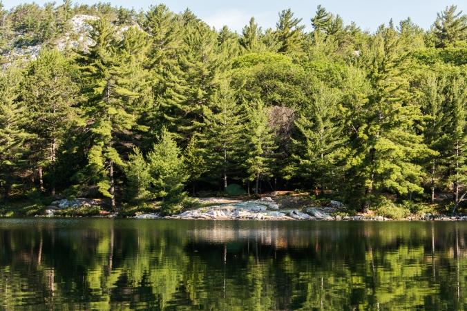 site 179 on Grace lake