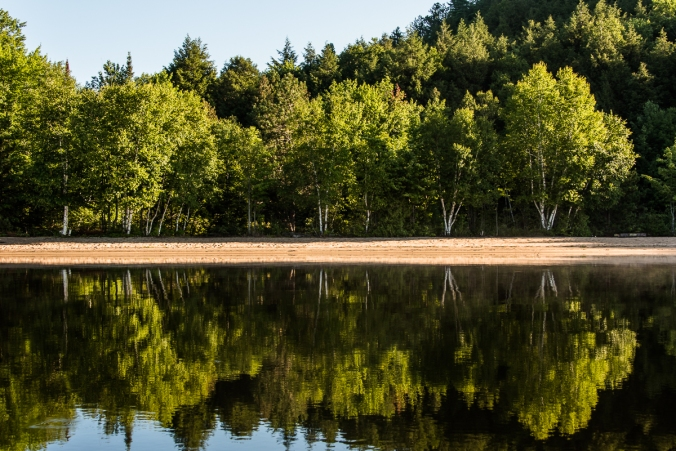 beach campsites on Manitou Lake in Algonquin