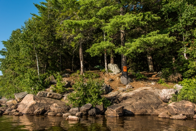 campsite on Manitou lake in Algonquin
