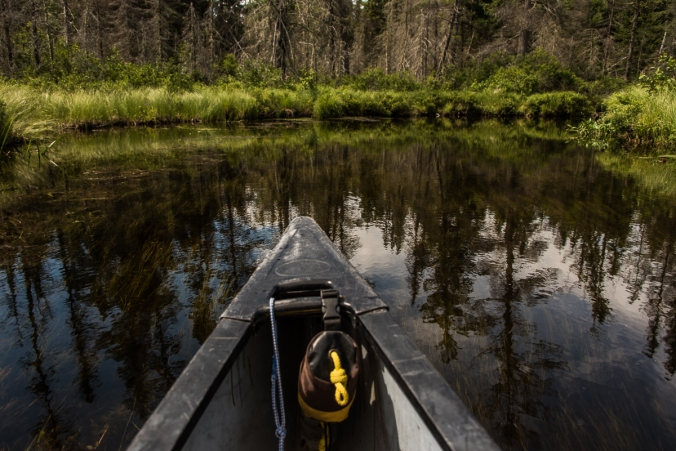 paddling on Amable du Fond river in Algonquin
