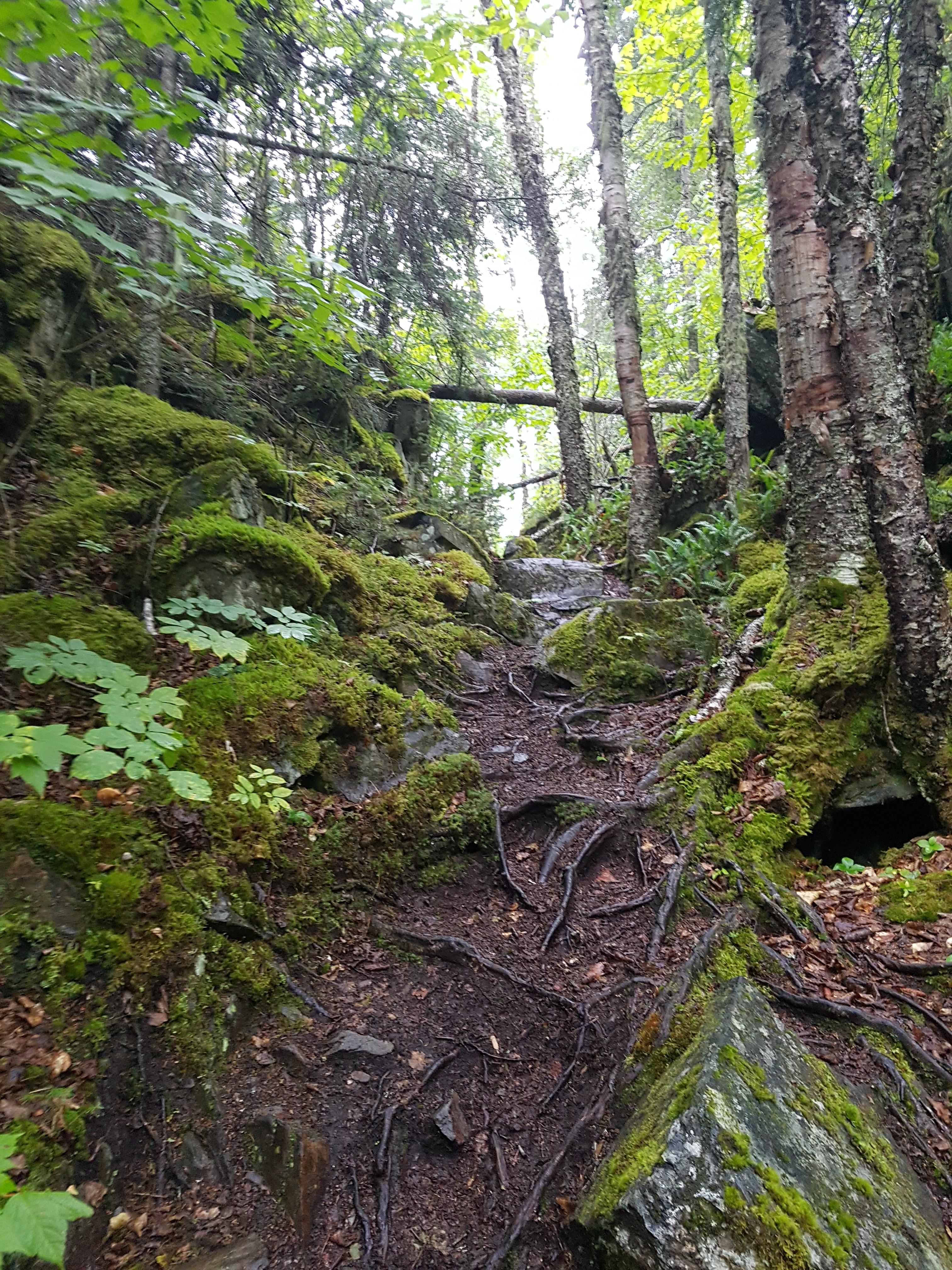 coastal trail at Pukaskwa