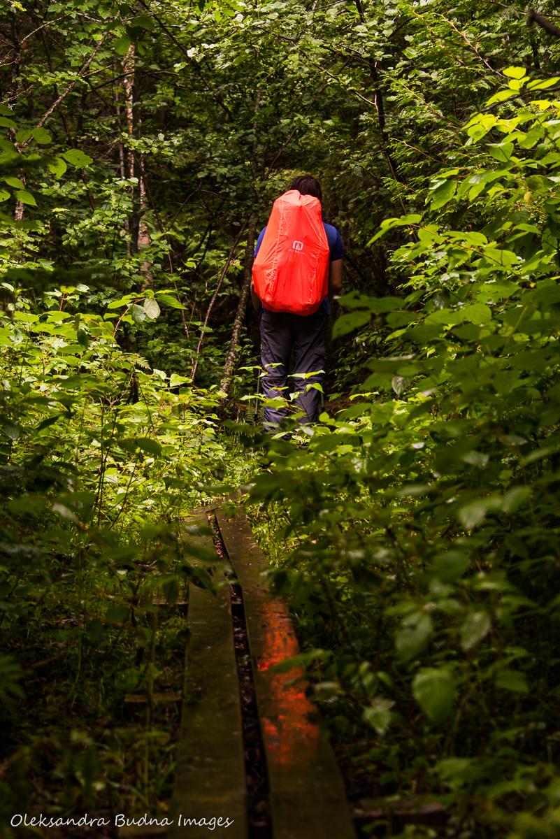 hiking Coastal Trail in Pukaskwa