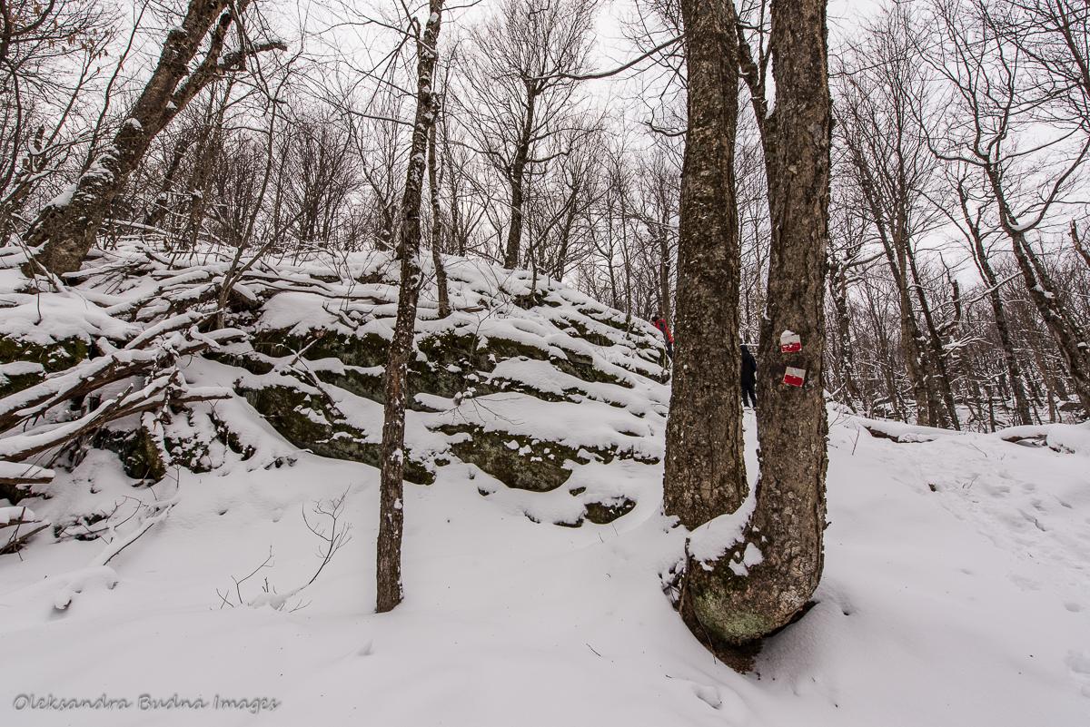 hiking at Au Diable Vert