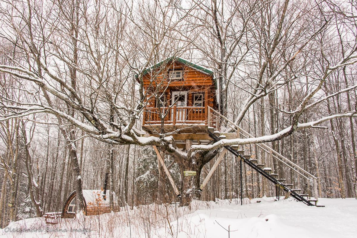 Treehouse at Au Diable Vert