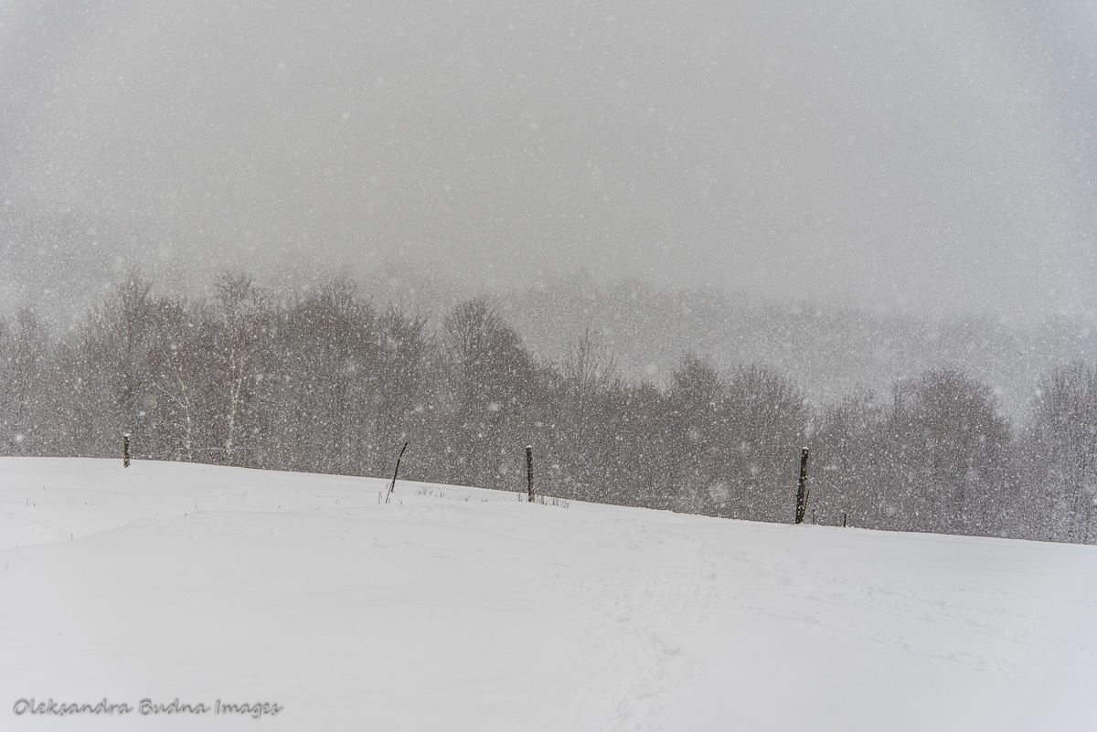Snowy day at Au Diable Vert