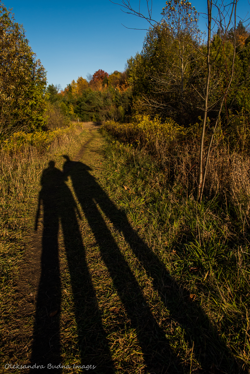 Hiking at Hockley Valley