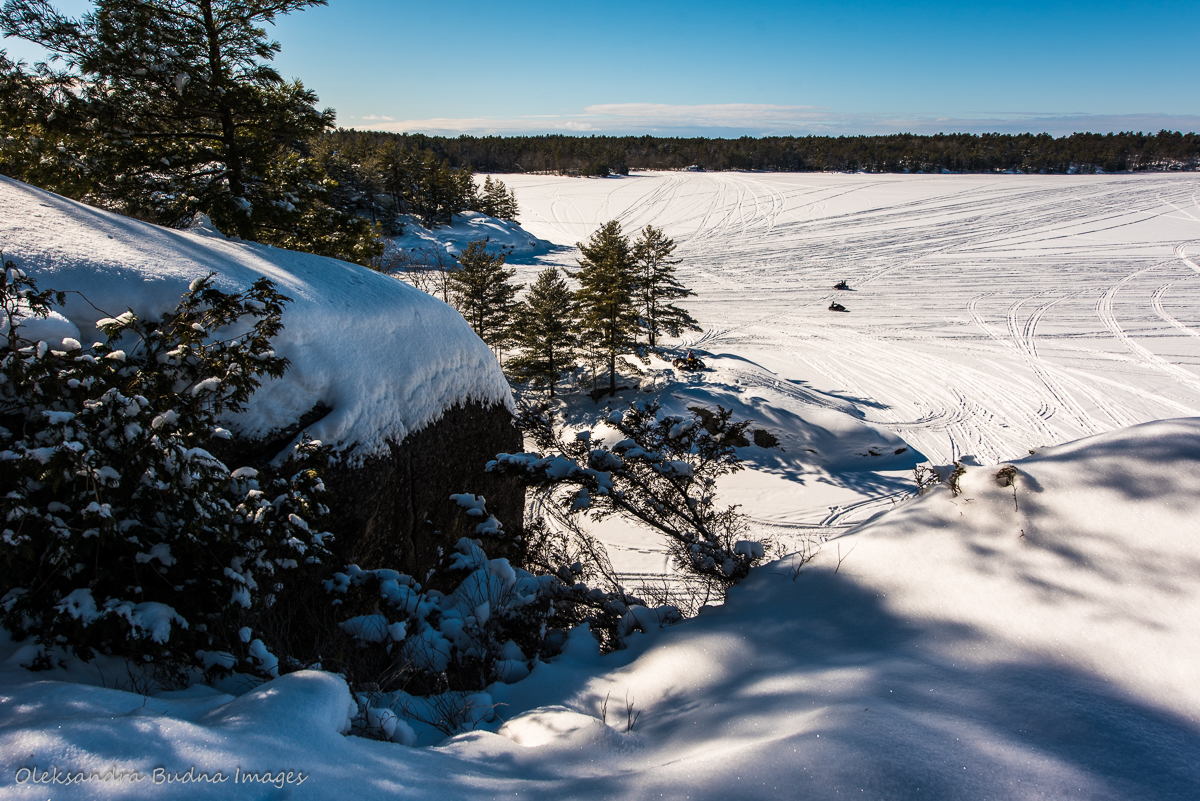 View from Crow's Nest lookout at McCrae Lake Conservation Reserve