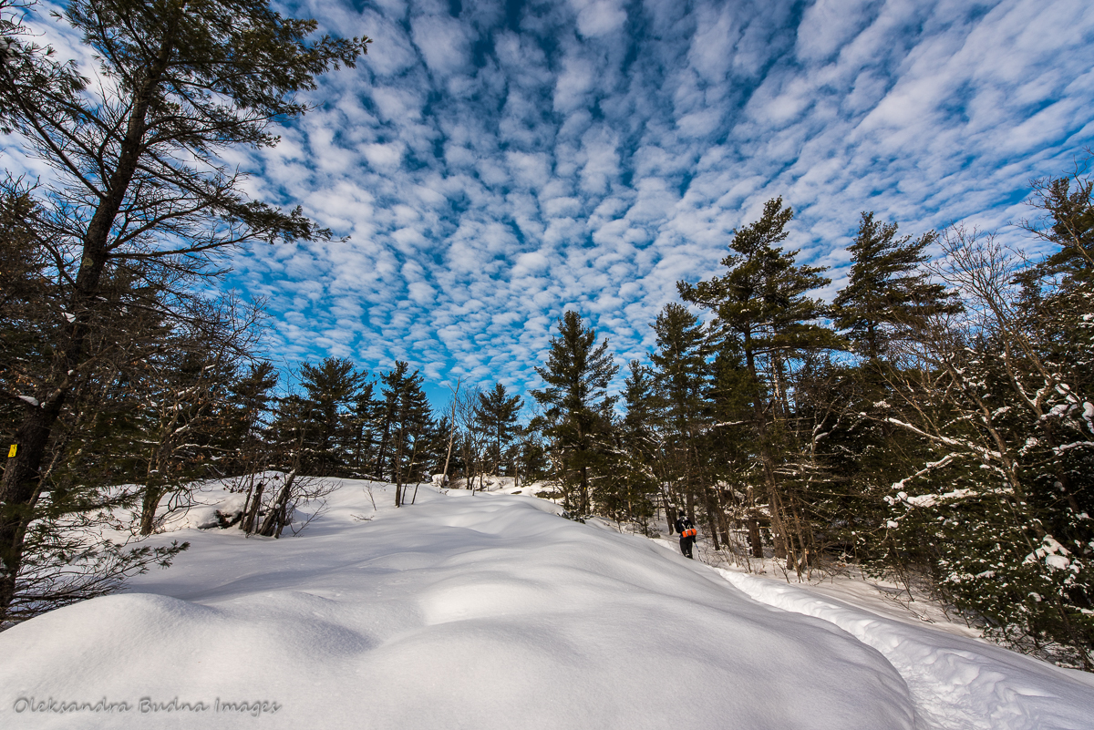 hiking at McCrae Lake Conservation Reserve