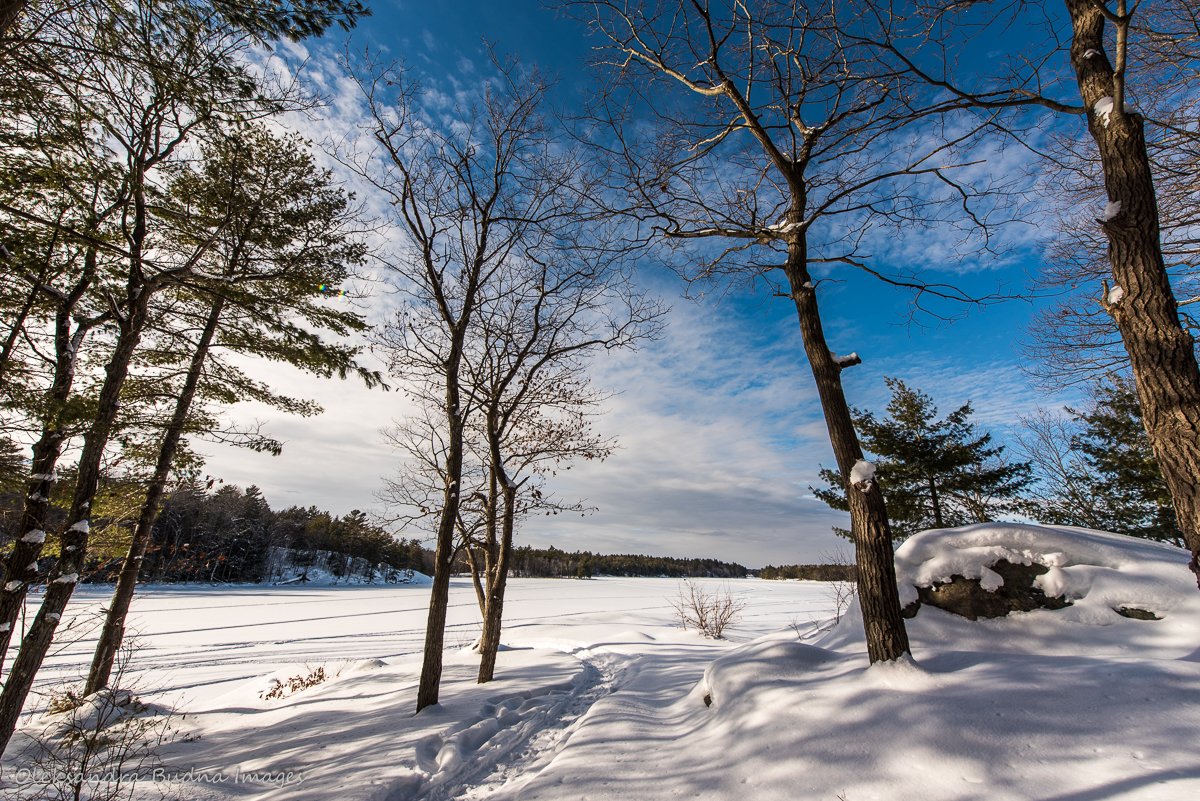 McCrae Lake in the winter