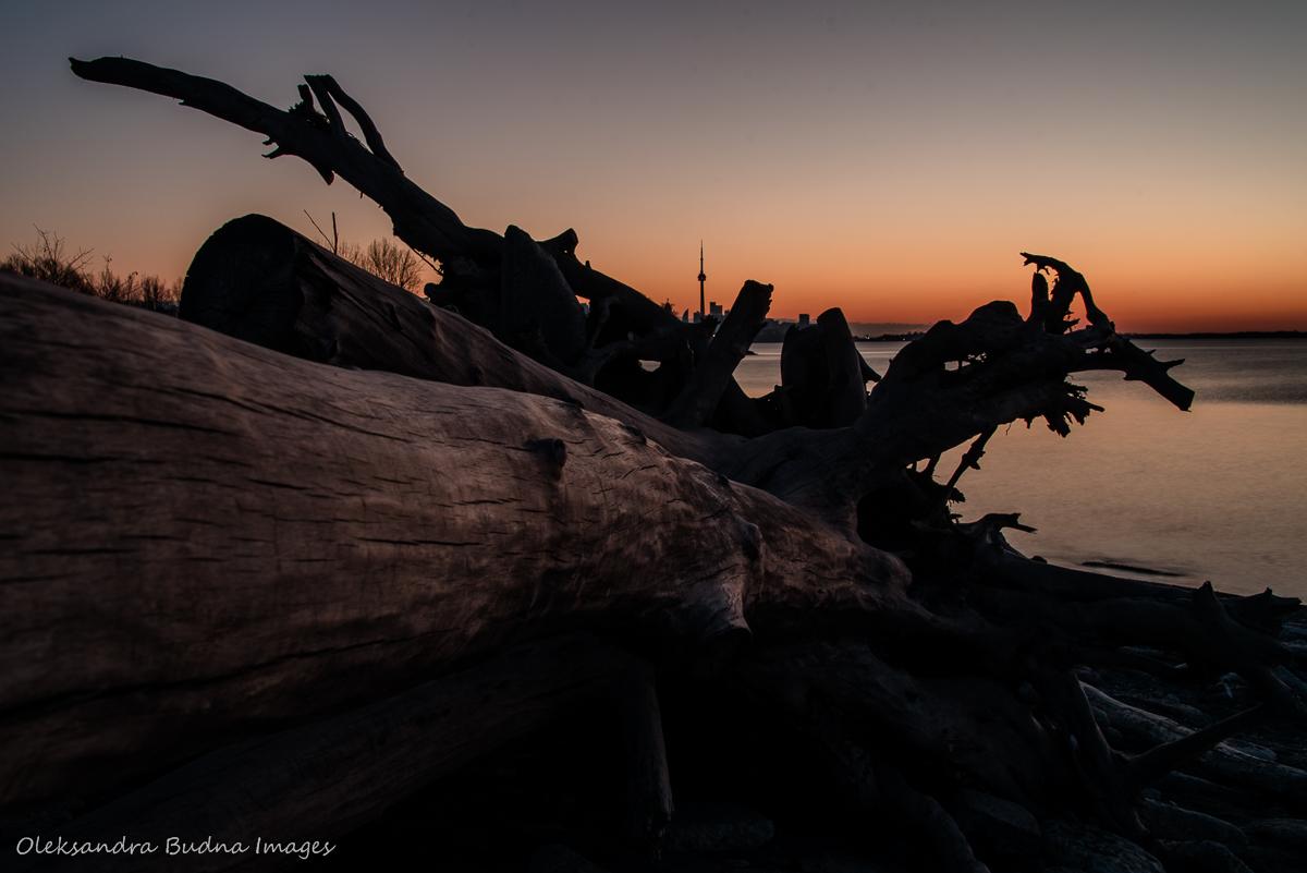 Waiting for a sunrise at Humber Bay Park on Lake Ontario