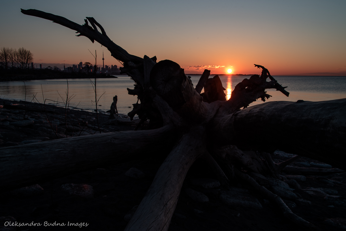 sunrise at HUmber Bay Park in Toronto