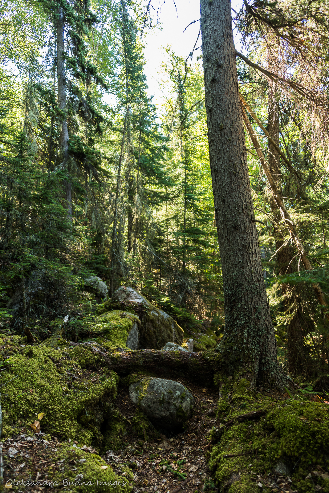 Coastal Hiking Trail in Pukaskwa