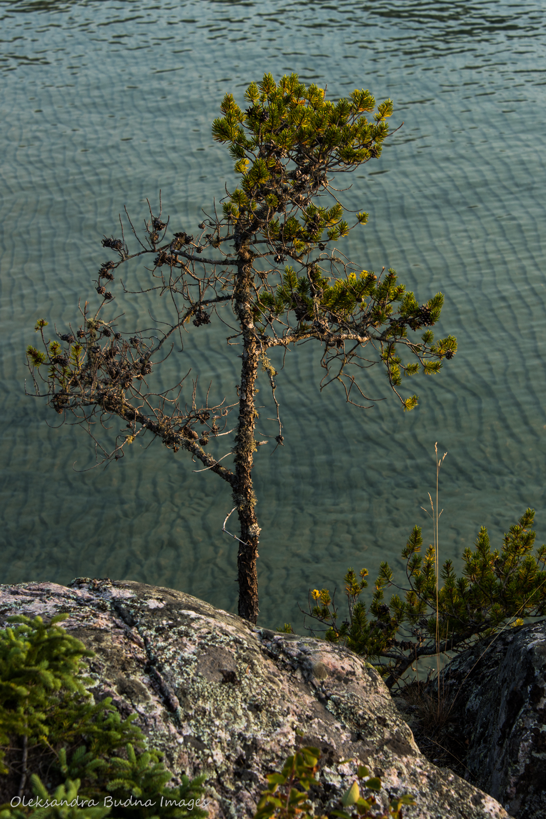 Fisherman's Cove in Pukaskwa
